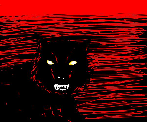 Wolf ready to kill