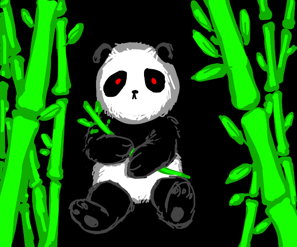 Feral panda possessive of bamboo