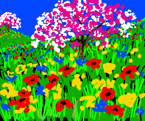 Field with multicolored flowers and trees