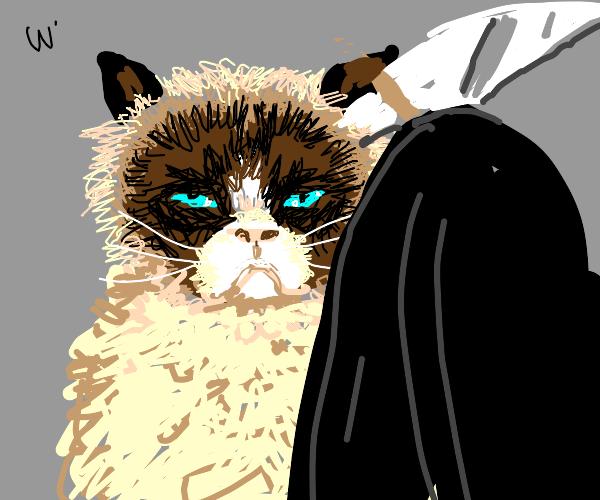 Grumpy cat confronts the grimm reaper