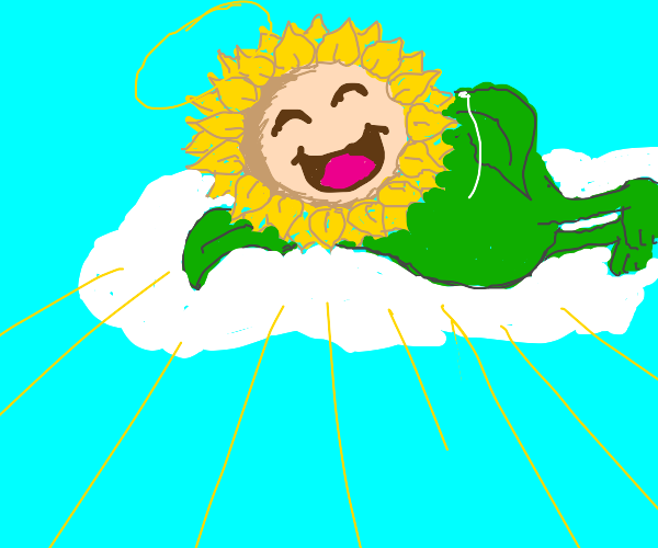 Sunflora is god