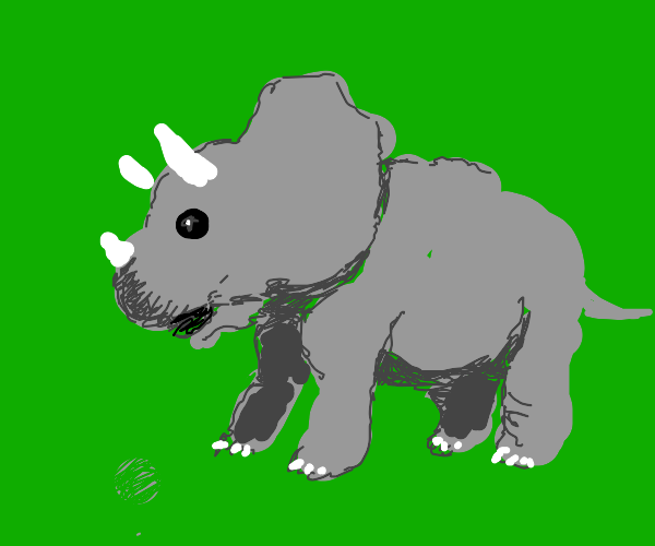 Triceratops baby