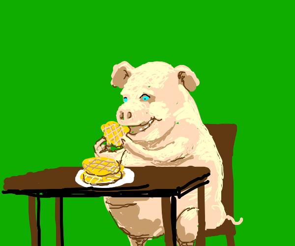 pig eating waffles