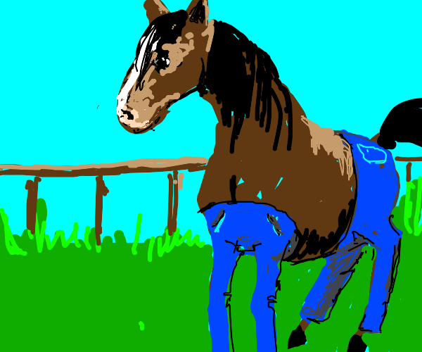 horse with jeans