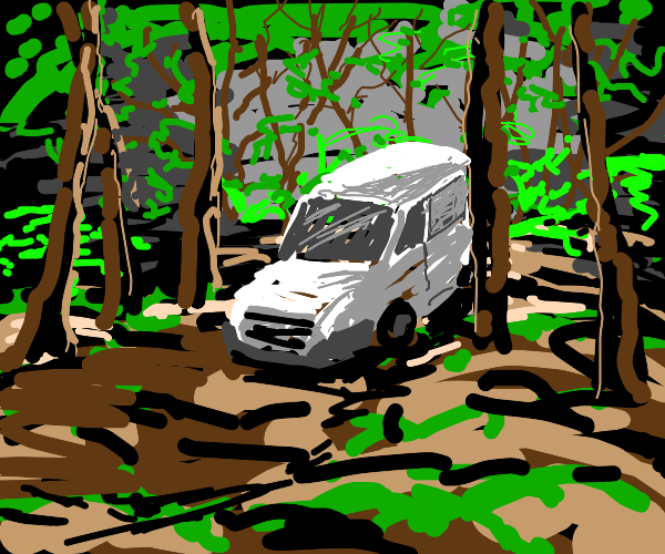 White van in the forest