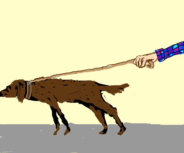 dog on lean
