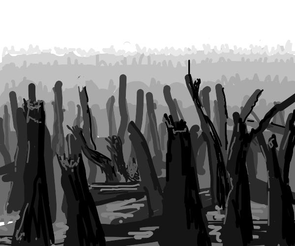 apocaliptic forest