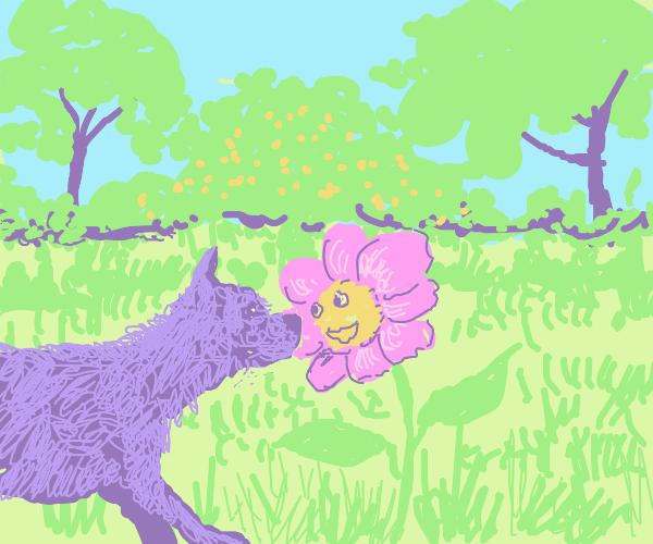 Kawaii Dog and Kawaii flower in a field
