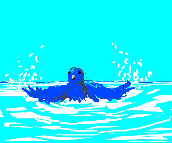 partially submerged blue bird