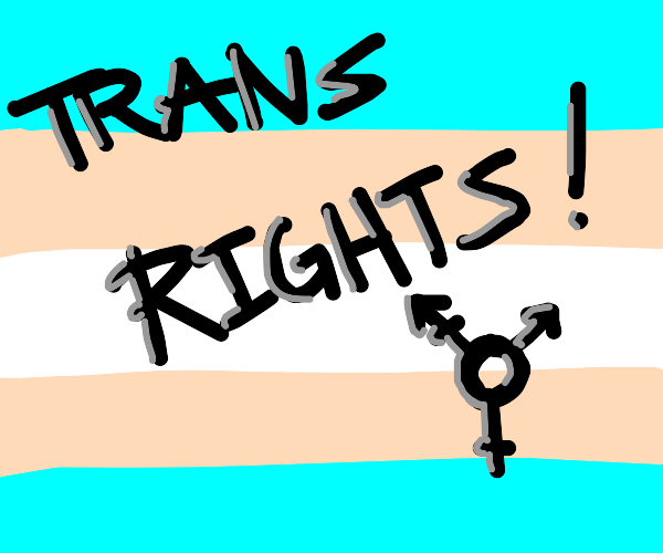 YES! TRANS RIGHTS