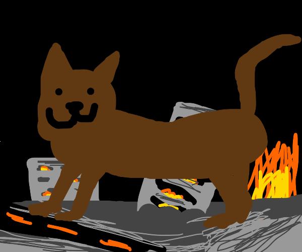giant cat crushes city