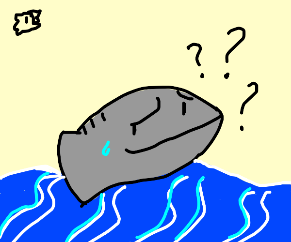 Fish is confused why he's floating on water