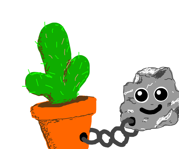 happy rock is tied to a cactus or vise versea