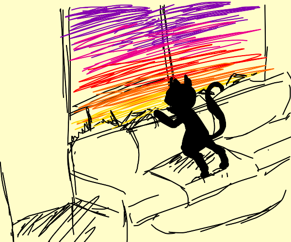 Cat looking out the window at a sunset