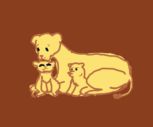 The birth of the two sons of a lioness