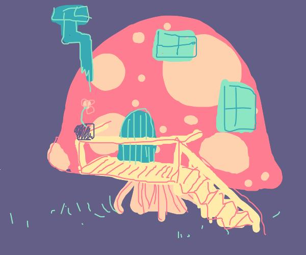 A quaint & Aesthetic Mushroom Home