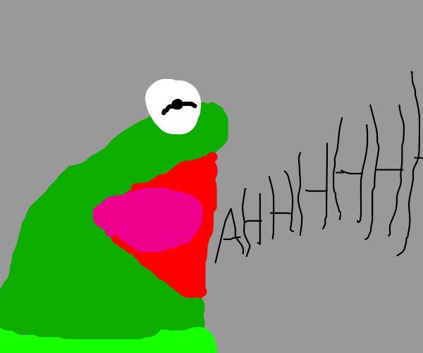 Kermit yelling AHHHHH!