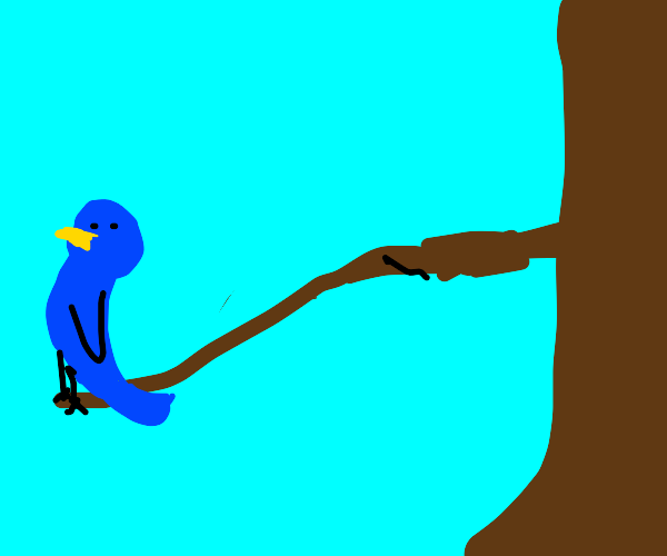 Bird on unstable branch