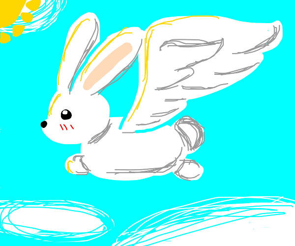 What if bunny... but wings?!