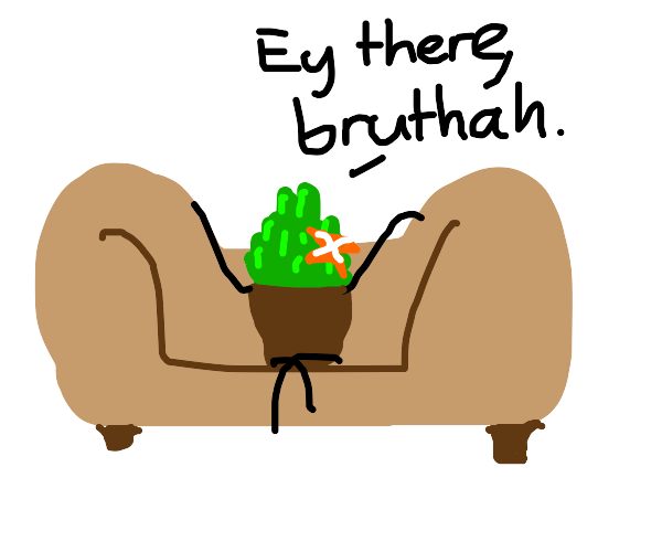 Pot plant chilling on a couch