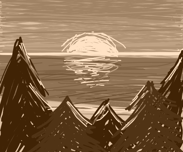 forest on coast, sunset