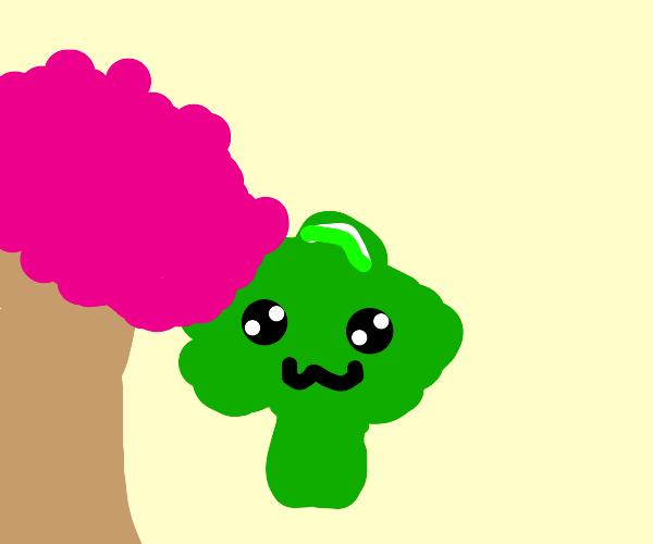 Aesthetic broccoli
