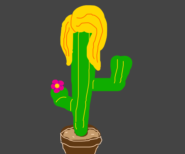 Is it a cactus?  Is it a girl?  YES