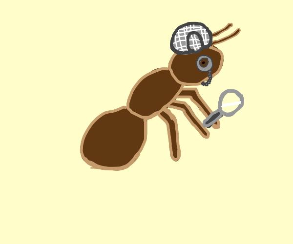 Detective Ant