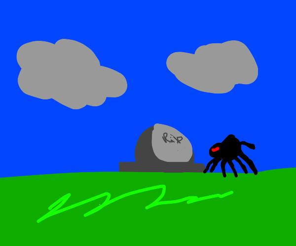 spider mourning their spider friend