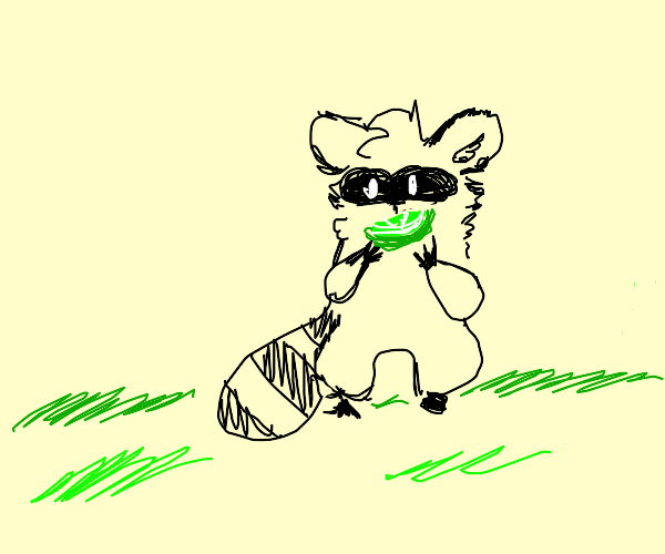 a raccoon carrying a lime