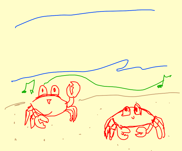 Crab dance party on the beach