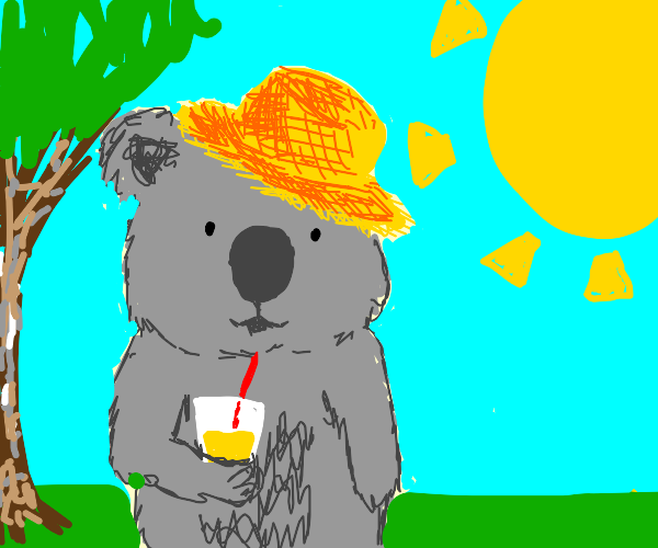 koala w/ strawhat drinks lemonade in the sun
