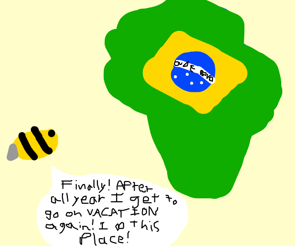 A bee loves going to Brazil