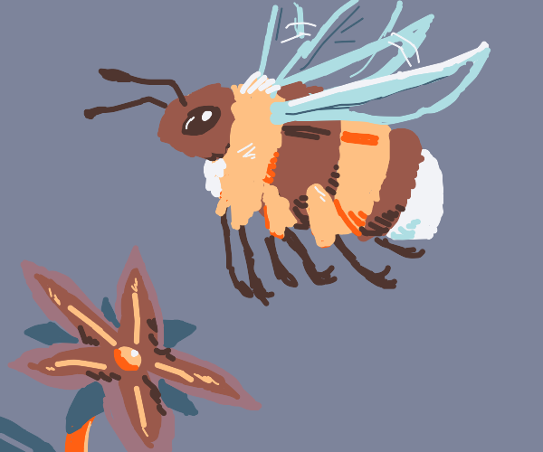 A cute bumblebee