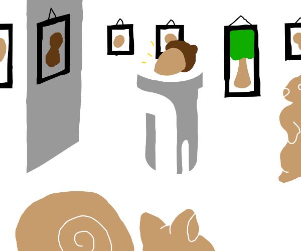 Squirrel Exhibit