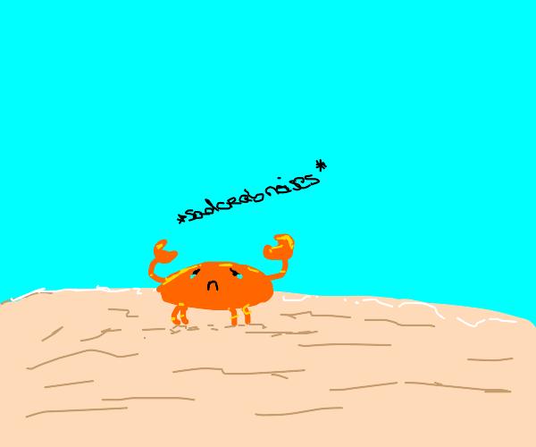 Sad crab