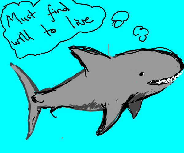 shark searching for will to live