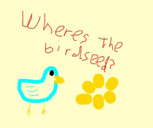 bird customer needs help