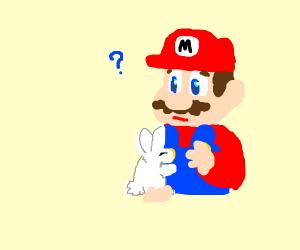 Mario getting hugged by bunny