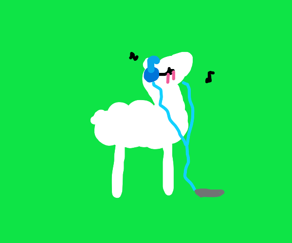 llama just vibing B)