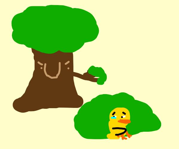 Duck hiding from tree man