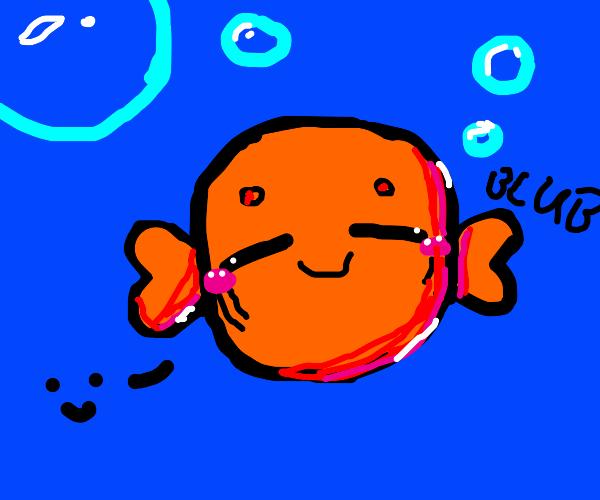 Calm Goldfish