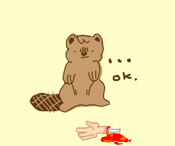 Fascinated beaver discovers a severed hand