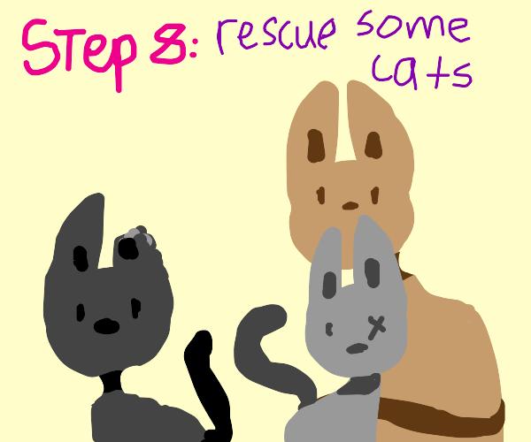 Step 7: be confused