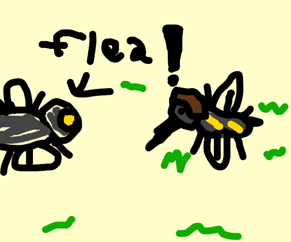 Mosquito with hair afraid of fiee