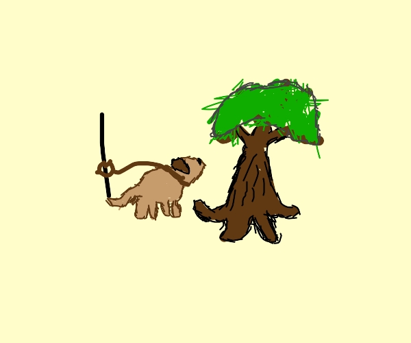 Dog tied to pole is angry at tree