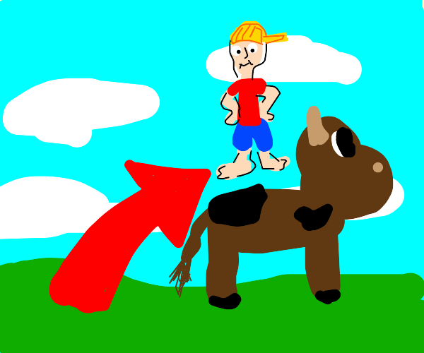 Boy jumping on cow