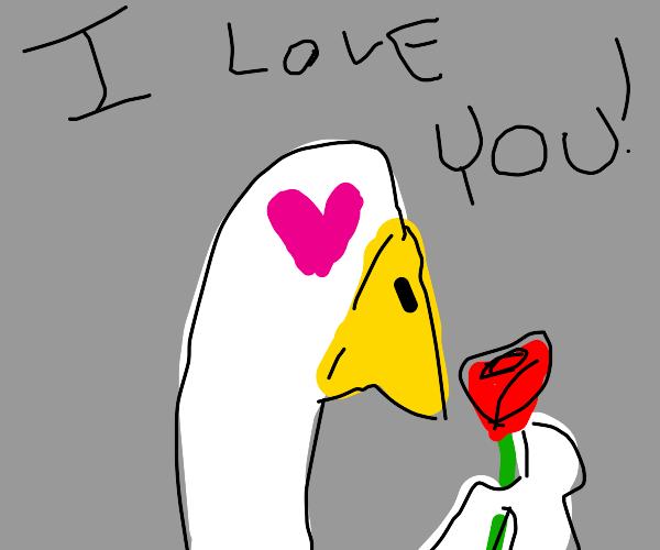 Goose loves you