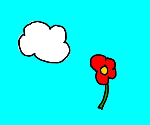 cloud & flower