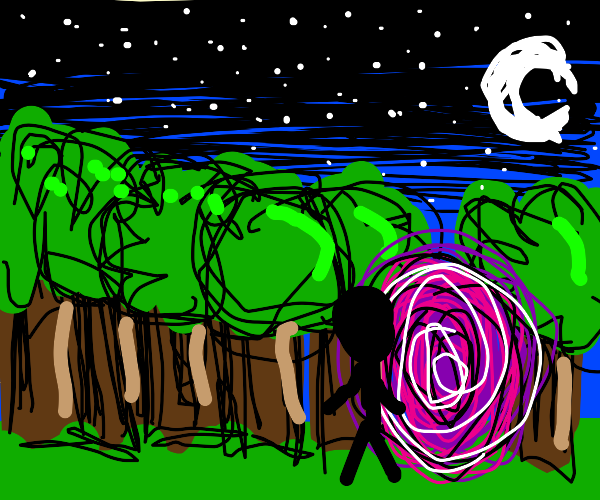 person walking into a portal between forests
